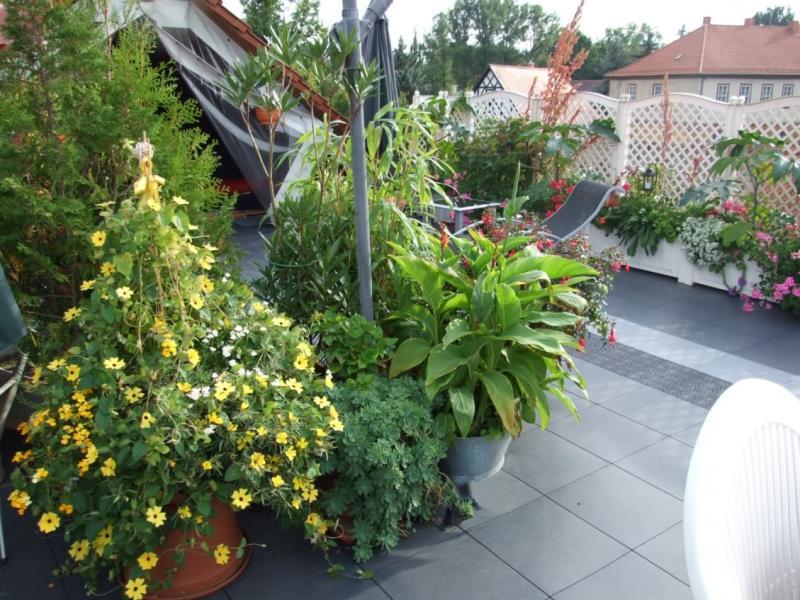 Dachterrasse mit Bodenfliese Typ  ELITE