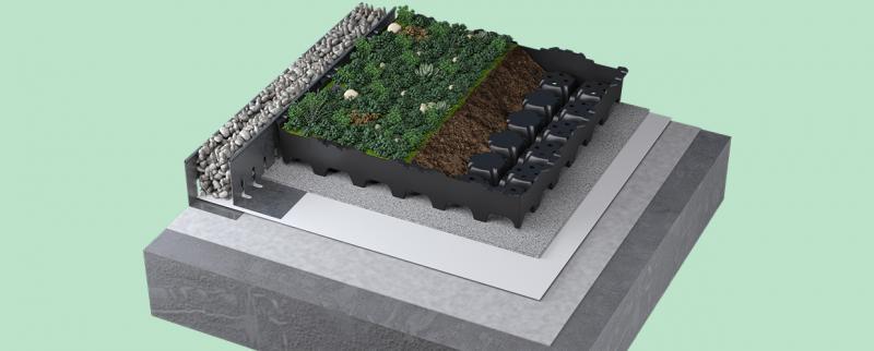Completa Dachbegrünungen